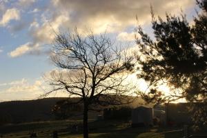 farm sun set