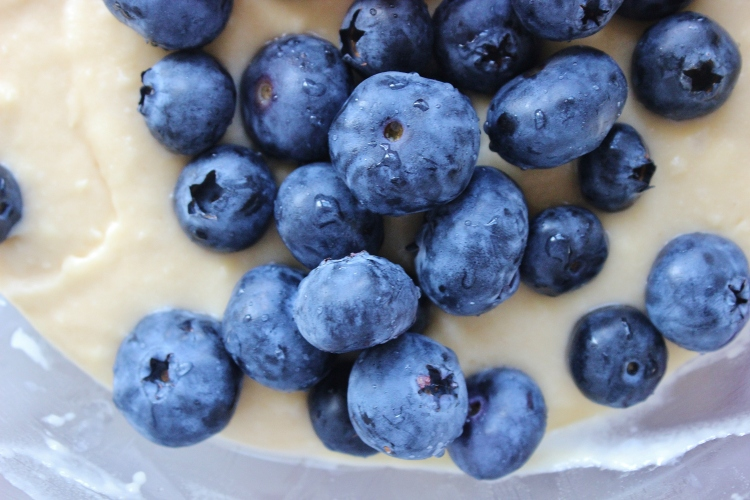 blueberries in batter