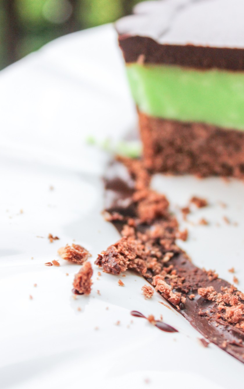 St Patrick's day mint chocolate slice (9 of 9)